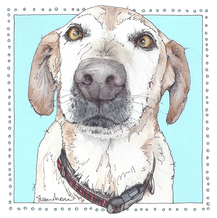 Memorial Pet Loss Products-Pet Portraits by Artist Suzanne Anderson at Froodle
