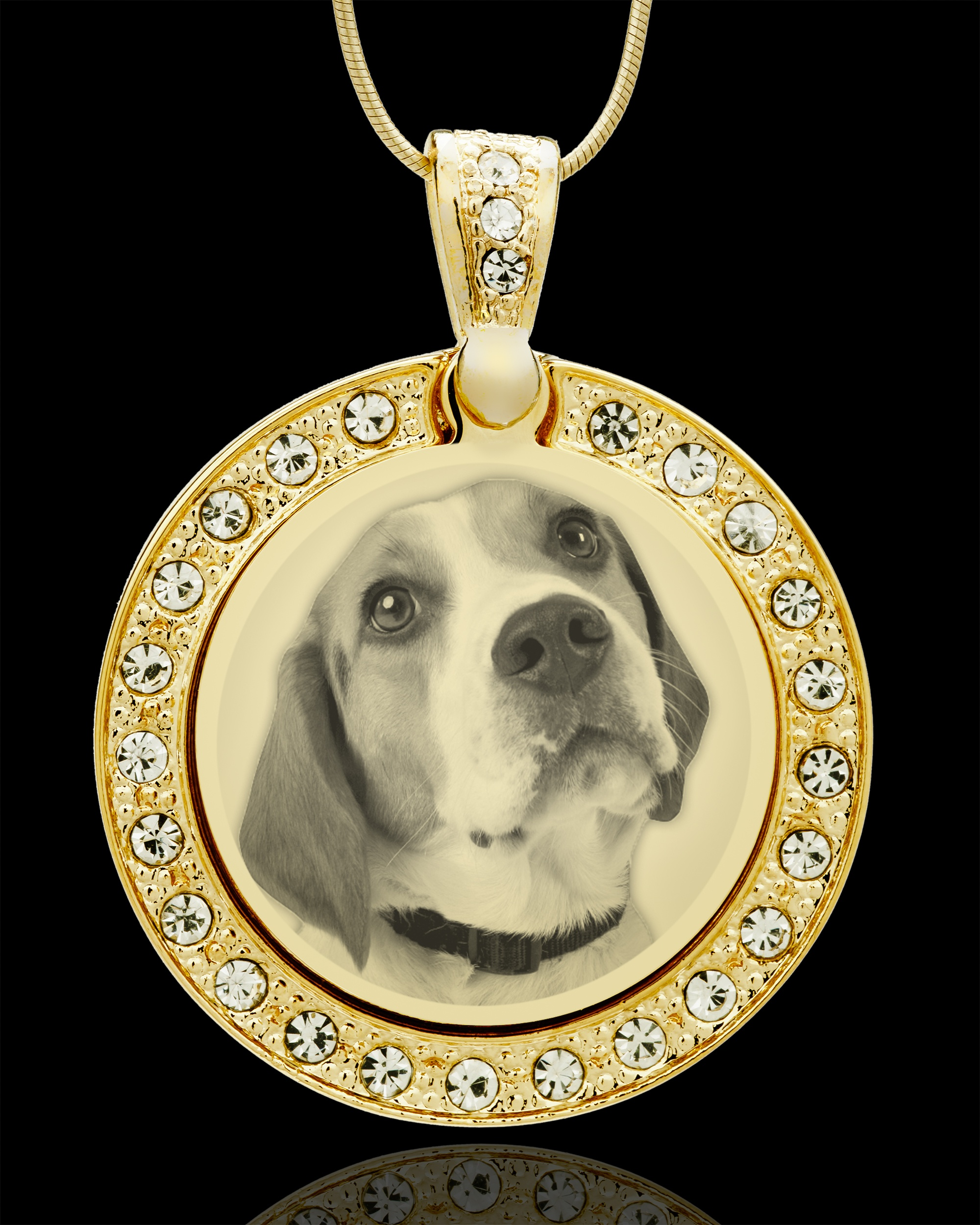Jewelry Keepsakes81-1351Photo Eng Gem Circle Pet Pendant Gold Plated.jpg808