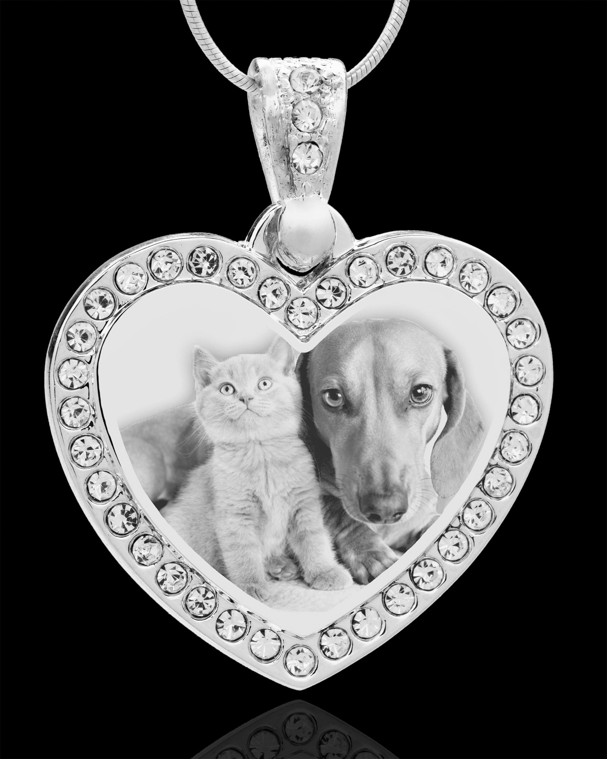 Jewelry Keepsakes81-3395Photo Eng Gem Heart Pet Pendant Stainless.jpg810