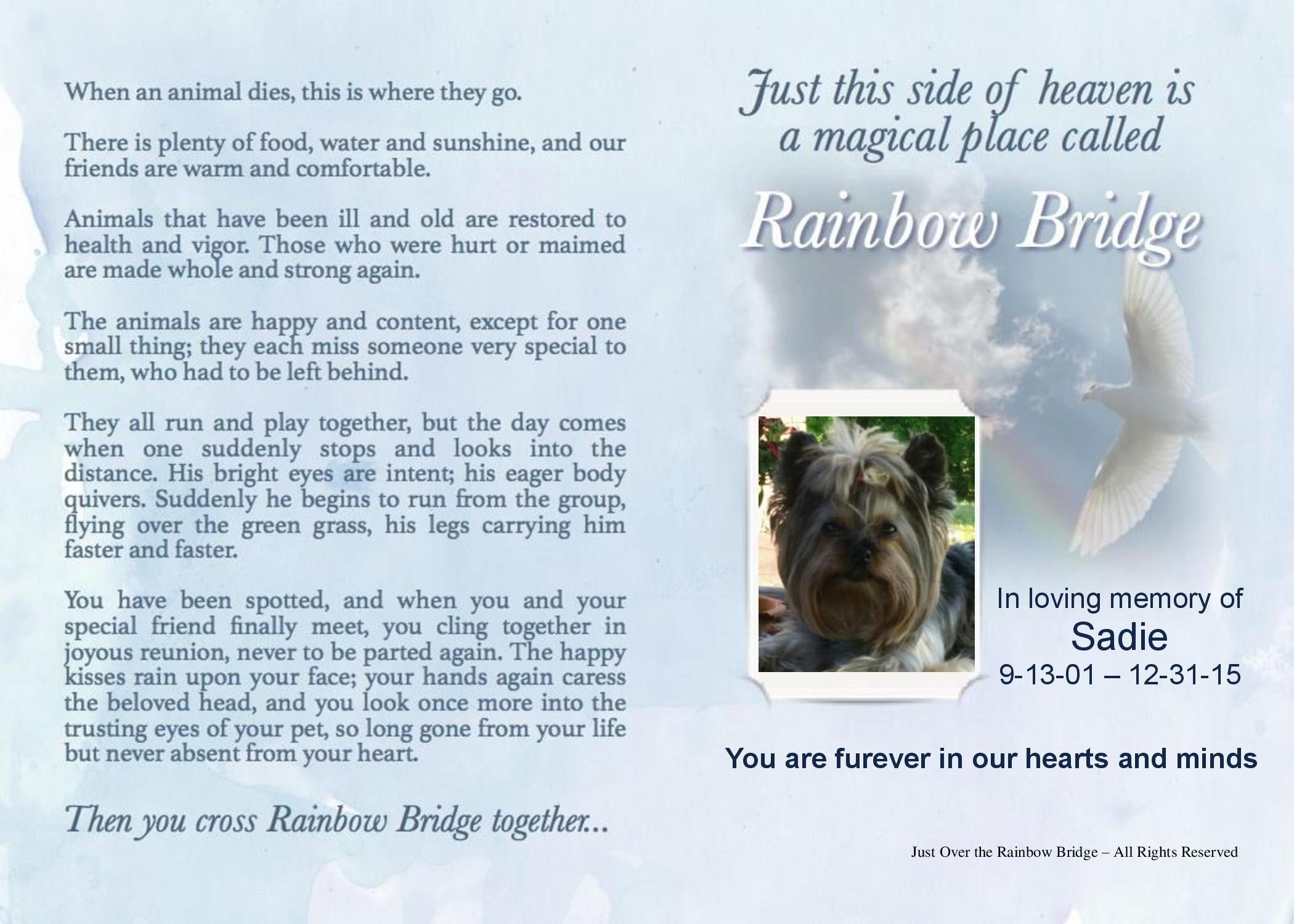 Just Over The Rainbow Bridge1-3567Stamper, Michelle - Sadie-FINAL APPROVED.jpg454
