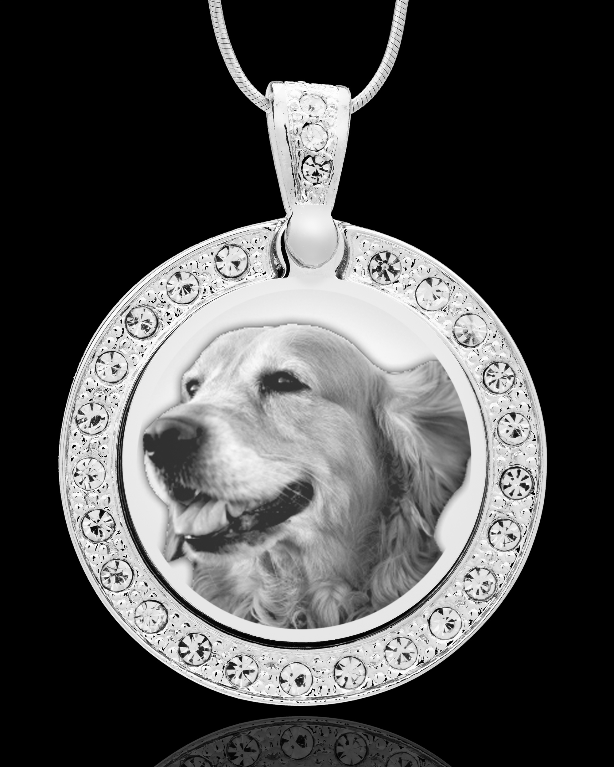 Jewelry Keepsakes81-3858Photo Eng Gem Circle Pet Pendant Stainless.jpg809