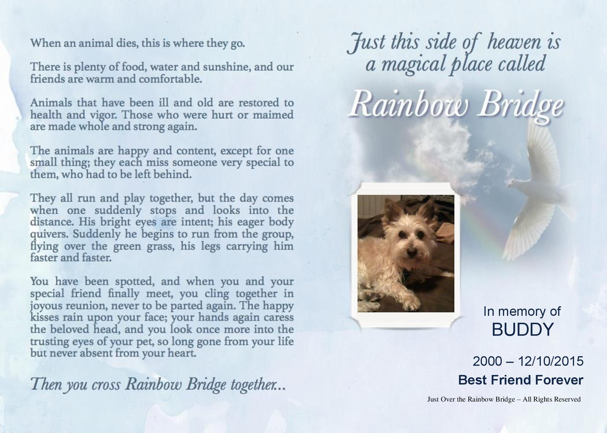 Just Over The Rainbow Bridge1-4248Yeager, David - Buddy - Approved- PDF converted to high resolution jpg.jpg455