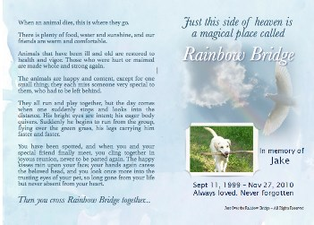 photograph about Rainbow Bridge Poem for Dogs Printable called Customized Rainbow Bridge Puppy Reduction Poems For Pet dogs and Cats