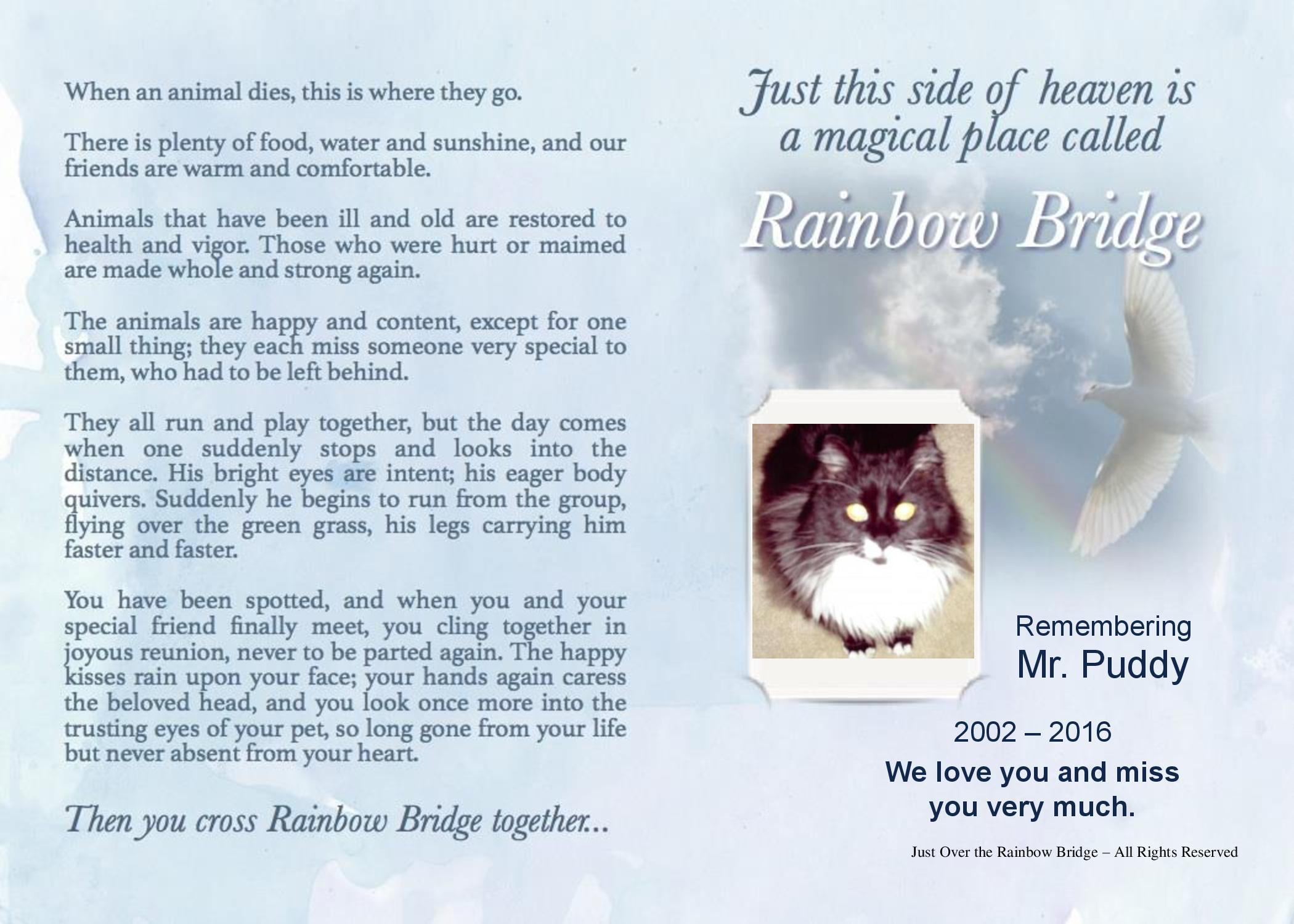 photograph about Poem Rainbow Bridge Printable identify Individualized Rainbow Bridge Canine Decline Poems For Canine and Cats